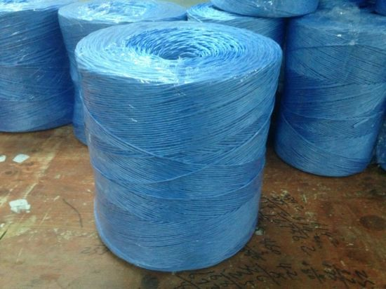 China 1ply 2ply Polypropylene Agriculture Baler Twine - China Twine