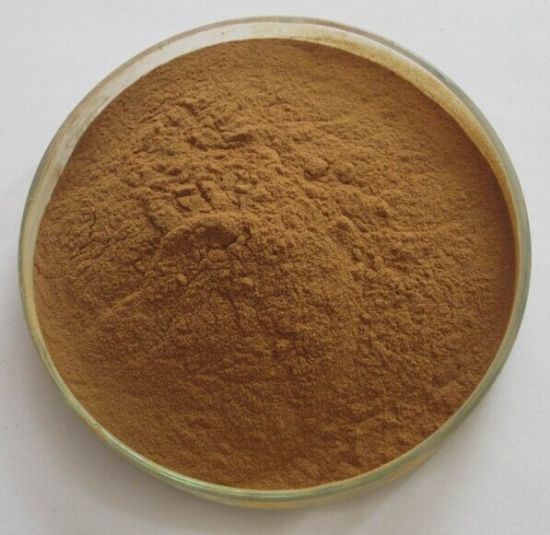 Hot Sale Bearberry Extract / Alpha Arbutin Plant Extract pictures & photos