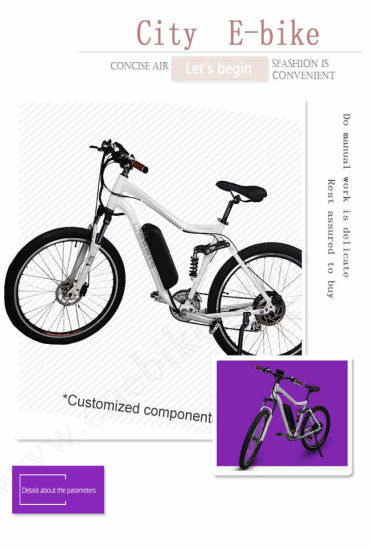 China Wholesale New Product Good Quality Sport Electric Bike MTB Ebike, Electric Mountian Bike Bicycle for Sale pictures & photos