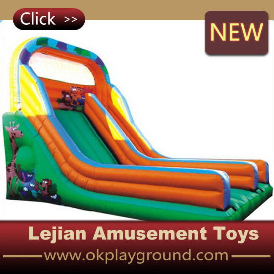 New Popular in Europe Inflatable Slide (C1223-1) pictures & photos