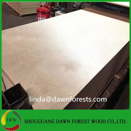 China Spray Painting Birch Plywood Used For Kitchen Cabinet China