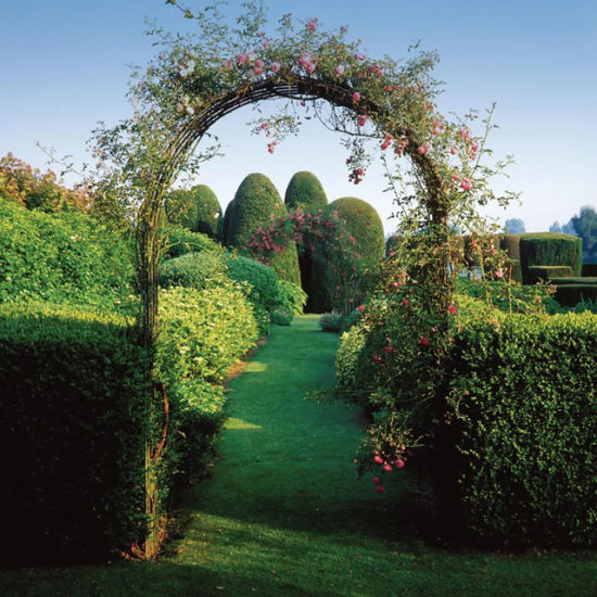 Outdoor Rose Climbing Plants Archway Garden Arch Gates For Wedding