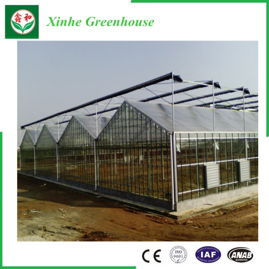 Muti Span Poly Greenhouse PC Greenhouse for Vegetable pictures & photos