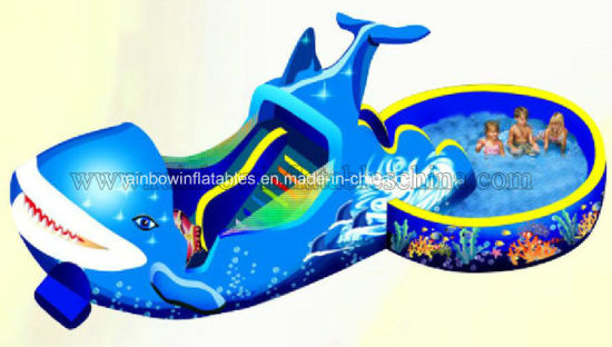 Commercial Inflatable Water Slide with Pool for Kids pictures & photos