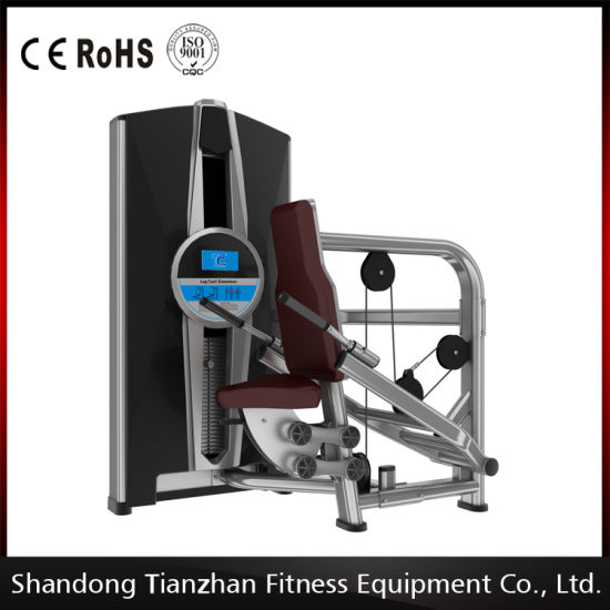 2016 New Design Triceps DIP Fitness Equipment From Tzfitness pictures & photos