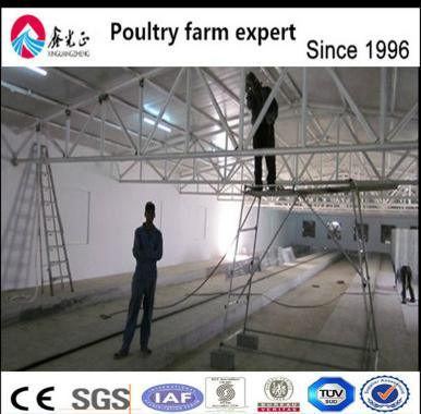 Steel Structure Meat Chicken House with Equipments pictures & photos