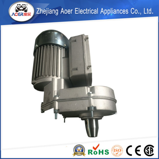 Variable Speed Low Rpm Gear Electric Motor pictures & photos