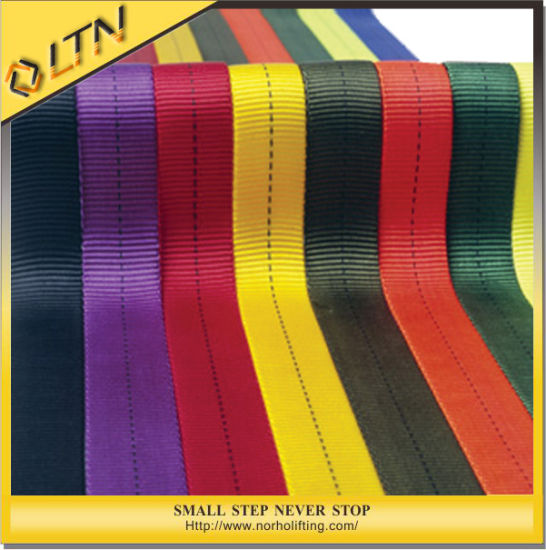 Low Price Professional Flat Webbing Sling (NHWS-B) pictures & photos
