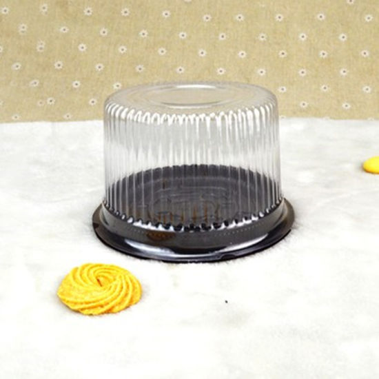 Pet Food Container Plastic Package Box Cake Dome with Lid