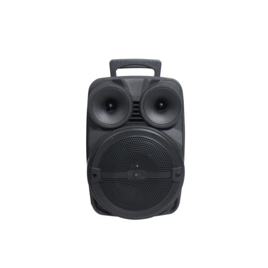 8 Inch Portable Battery Speaker with Bluetooth OEM Guangzhou