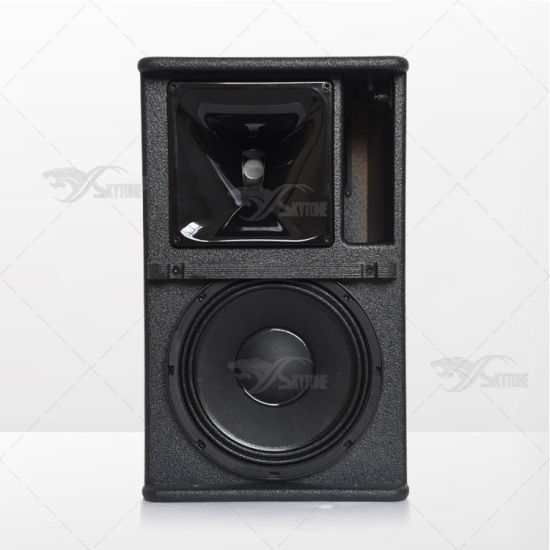 Skytone New Design 10 Inch Mini Line Array Speaker pictures & photos