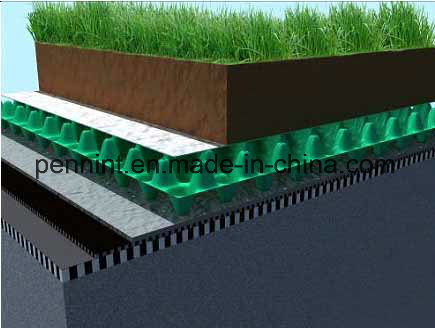 White/Black Drainage Board for Green Roof Waterproofing Systems pictures & photos