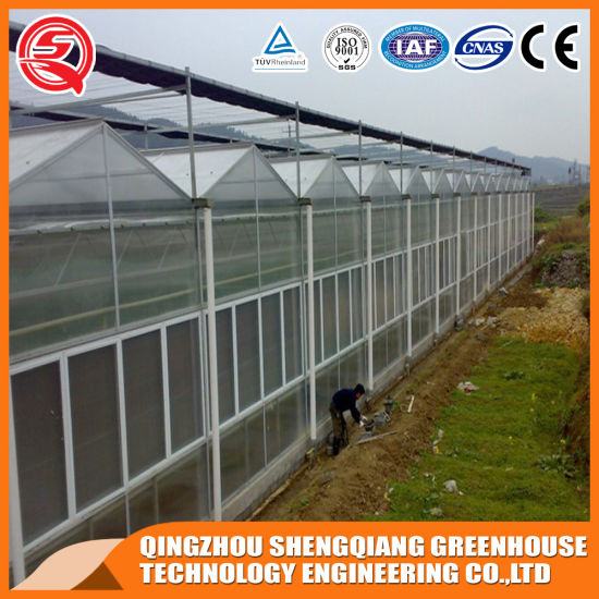 Agriculture Productive PC Greenhouse for Planting Tomato/Vegetable/Garden