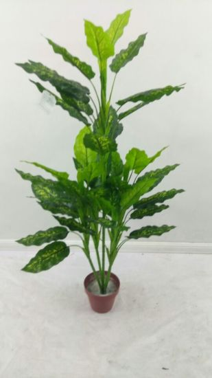 High Quality of Artificial Plants with 24lvs Spythiphyllum Gu911093923 pictures & photos