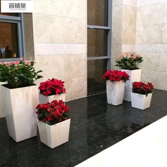 Large Size Self Watering Garden Decoration PP Plants Pot
