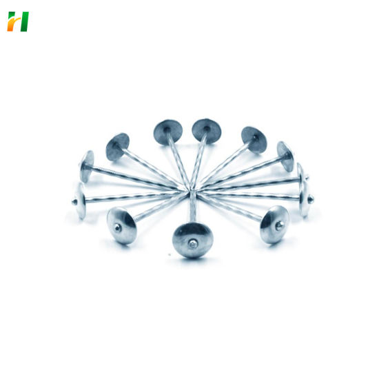Head Roofing Nails 2.5 Inch Roofing Nail Galvanized Roofing Nail