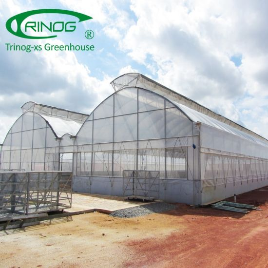 Africa tropical film tunnel Greenhouse China for farm