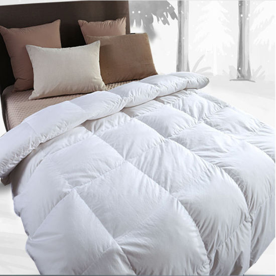 High Quality Embroidery 100% Suzhou Microfiber Silk Duvet/Comforter Cover pictures & photos