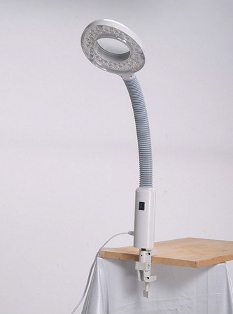 Facial Steamer+Magnifying Lamp pictures & photos