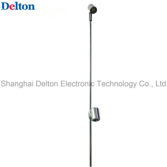 2W 2 Light Flexible LED Pole Light (DT-ZBD-003)