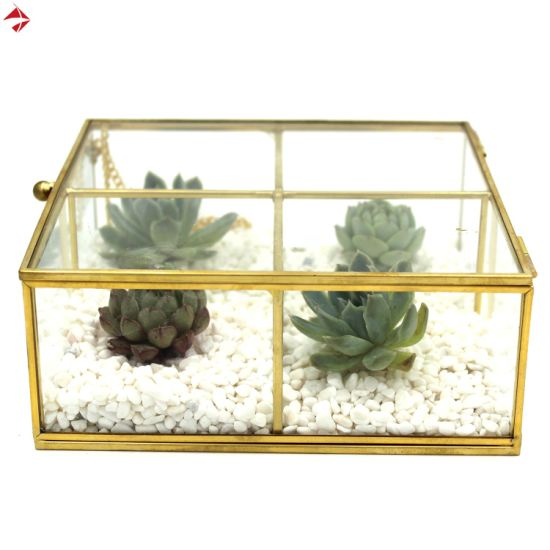 China 6 Compartment Glass Display Box For Dresser Top Jewelry