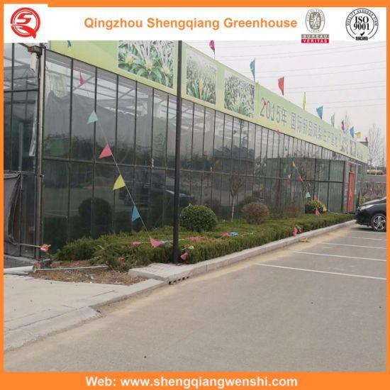 Commercial Garden Glass Green House for Vegetable Flower Growing