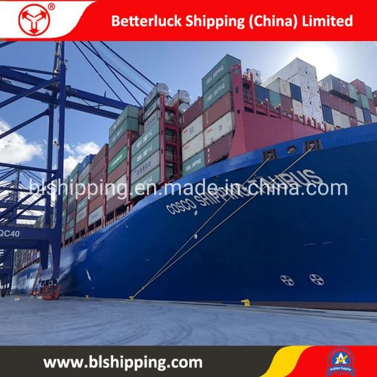 From China to Azerbaijan Qabala Sea Land Transportation Container Logistic pictures & photos