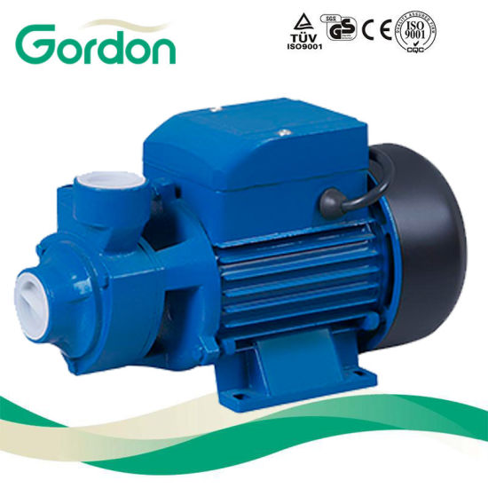 Gardon Electric Brass Impeller Peripheral Water Pump with Spare Parts pictures & photos