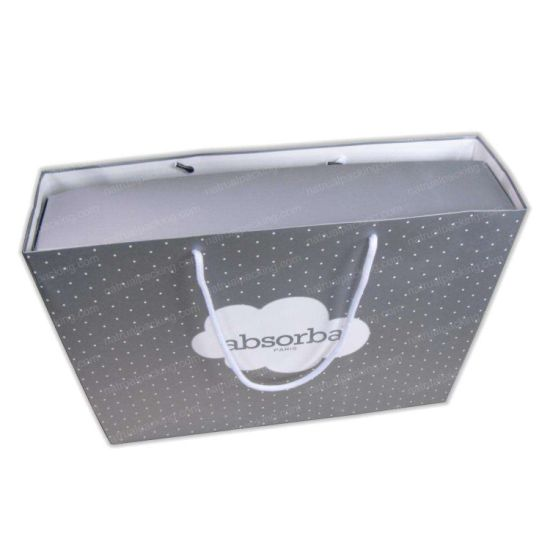 Matt Lamination Luxury Gift Promotion Paper Box Bag pictures & photos
