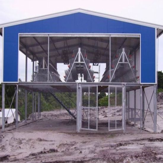 Pre Engineered Structural Steel Chicken House with Raising System (PCH-5)