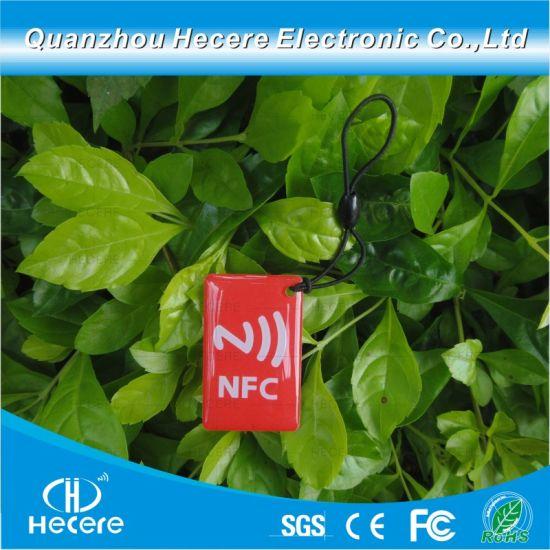 Direct Buy China Qr Code Animal Tracking Pet Dog Tags Ntag 213 RFID Epoxy  NFC Tag Waterproof