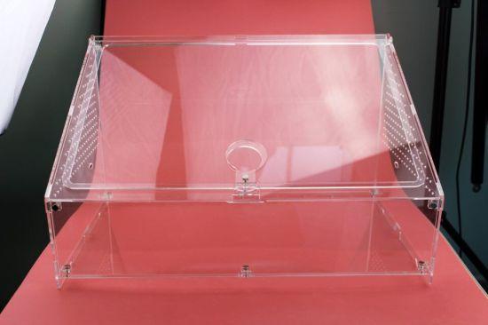 China Acrylic Transparent Reptile Cage Terrarium Box China Reptile