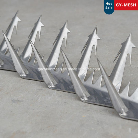 Wall Spike for Security Fence Factory