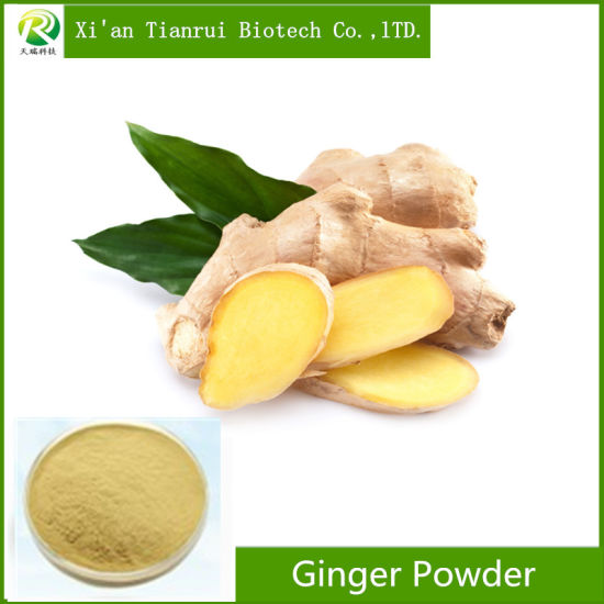 Factory Supply Organic Instant Ginger Powder pictures & photos