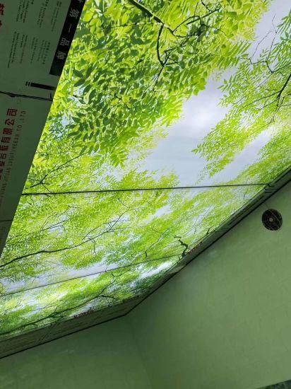 Digital Printing Exhibition LED Light Box PVC Fabric Canvas Backlit Banner