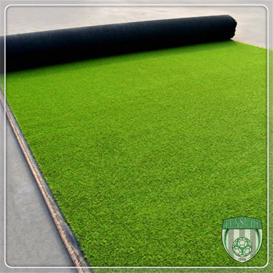 Multi Functional Customized Landscaping Artificial Synthetic Grass pictures & photos