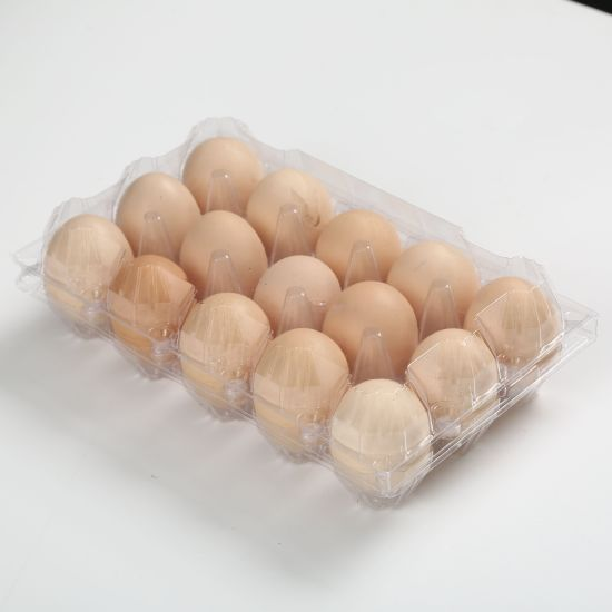 Wholesale Good Quality Plastic Egg Tray for Packaging