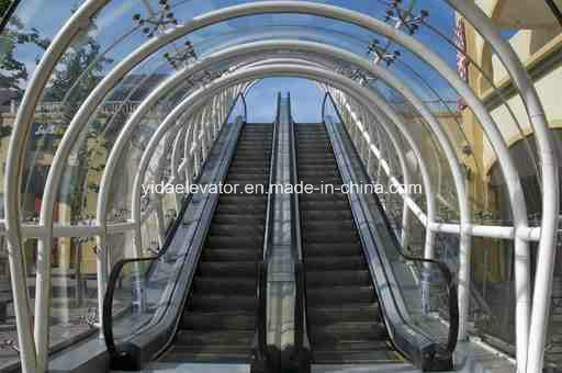 Escalator (indoor type) pictures & photos