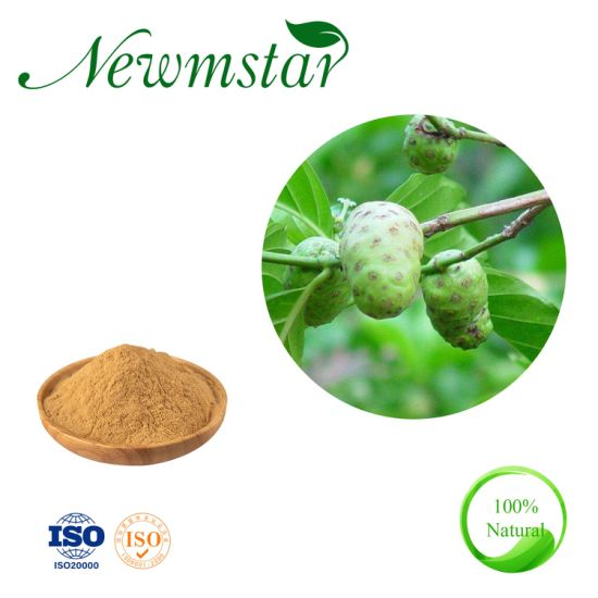 100% Pure Natural Dried Noni Fruit Powder 10: 1 Vietnam Noni Extract Powder
