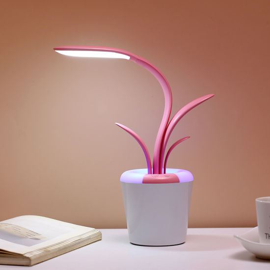 Creative USB Clivia Desk Lamp Eye Care USB LED Reading LED Lights pictures & photos