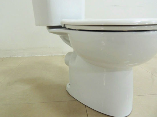 Watermark 4.5/3L Washdown Ceramic Two Piece Toilet Sanitary Wares (8008) pictures & photos