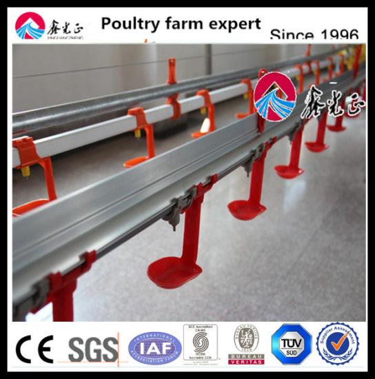 Chicken Broiler Poultry Farming Feeding Drinking Equipment