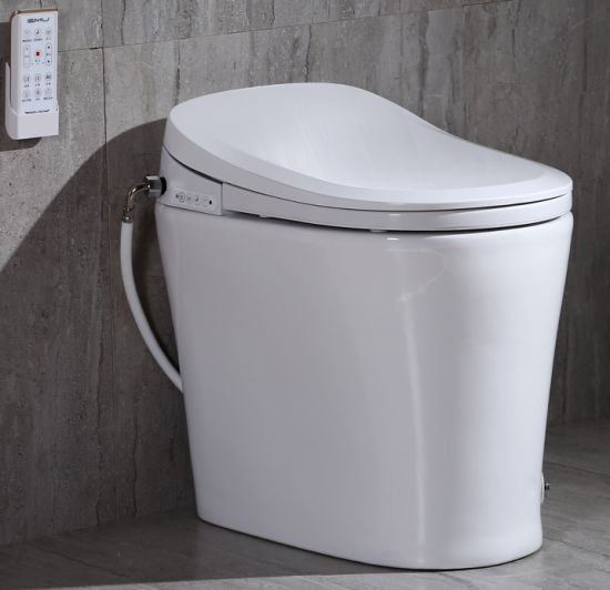Electronic Bidet Toilet with Ce