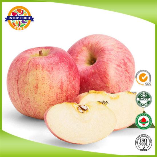 Fresh New Crop FUJI Apple with Carton Packing