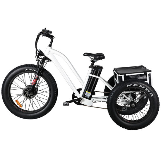 48V 500W Cargo Bicycle Electric Tyre Tricycle with Suspension, Mozo
