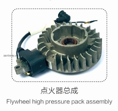 381igniter Assembly for Petrol Chainsaw Replacement Parts