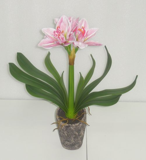 Realistic Clivia Miniata Artificial Flower Plant in Cement Planter for Indoor Decoration