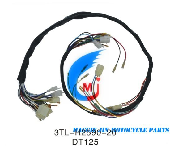 Motorcycle Parts Motorcycle Wire Harness for Dt125 on