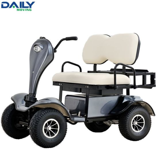China 24V 1500W Motor Double Seat Electric Golf Cart / Buggy - China on golf golfers carts for handicapped, wagon seats, golf carts like trucks, golf hand carts, boat seats, motorized bike seats, golf cort, golf carts for disabled, golf buggy, golf seats folding, golf carts made in china, go kart seats,