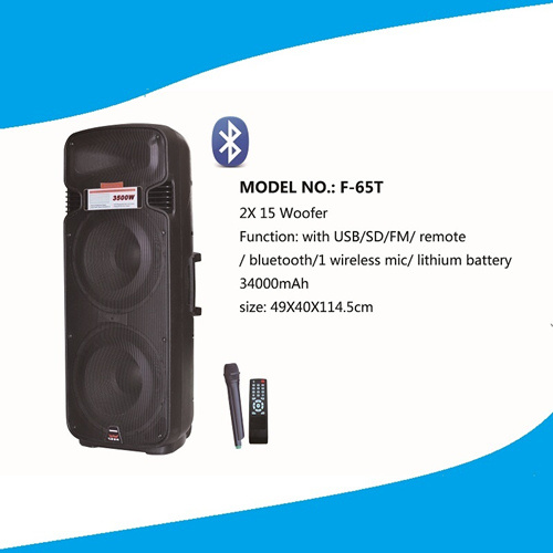 Double 15 '' Professional Speaker with Mico, Remote, Bt F65t